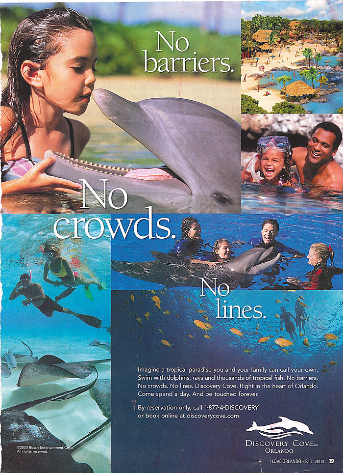 Make Up Discovery Cove